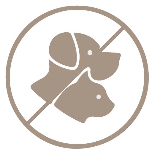 Kisallat-NEM-NO-pets