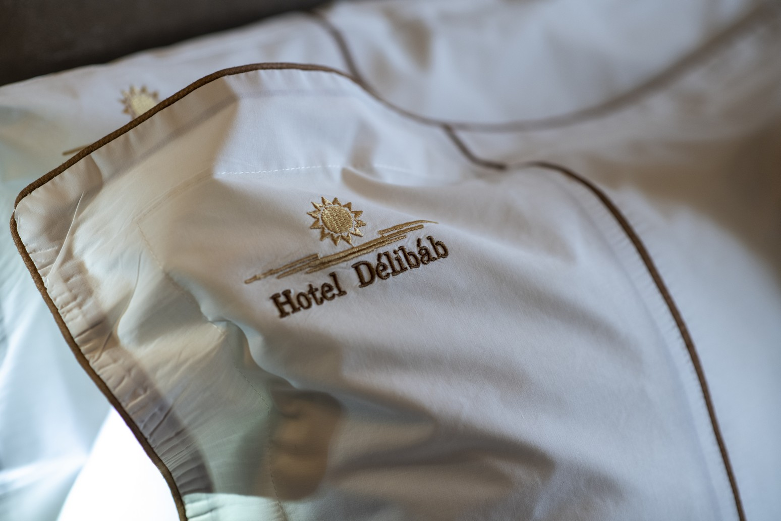 Classic-franciaagy-parna-HotelDelibab