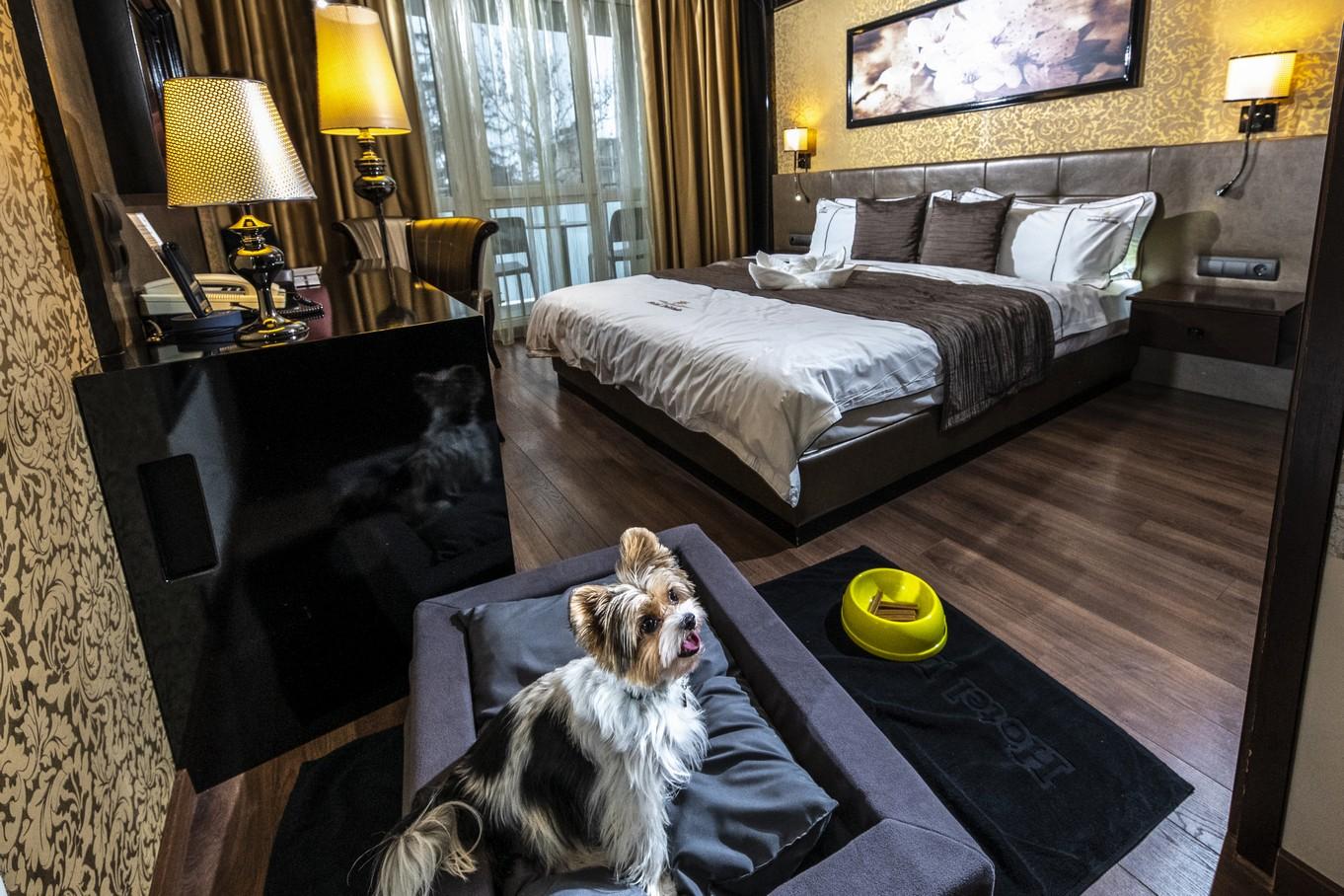 Parkettas-erkelyes-szoba-Kisallat-HotelDelibab